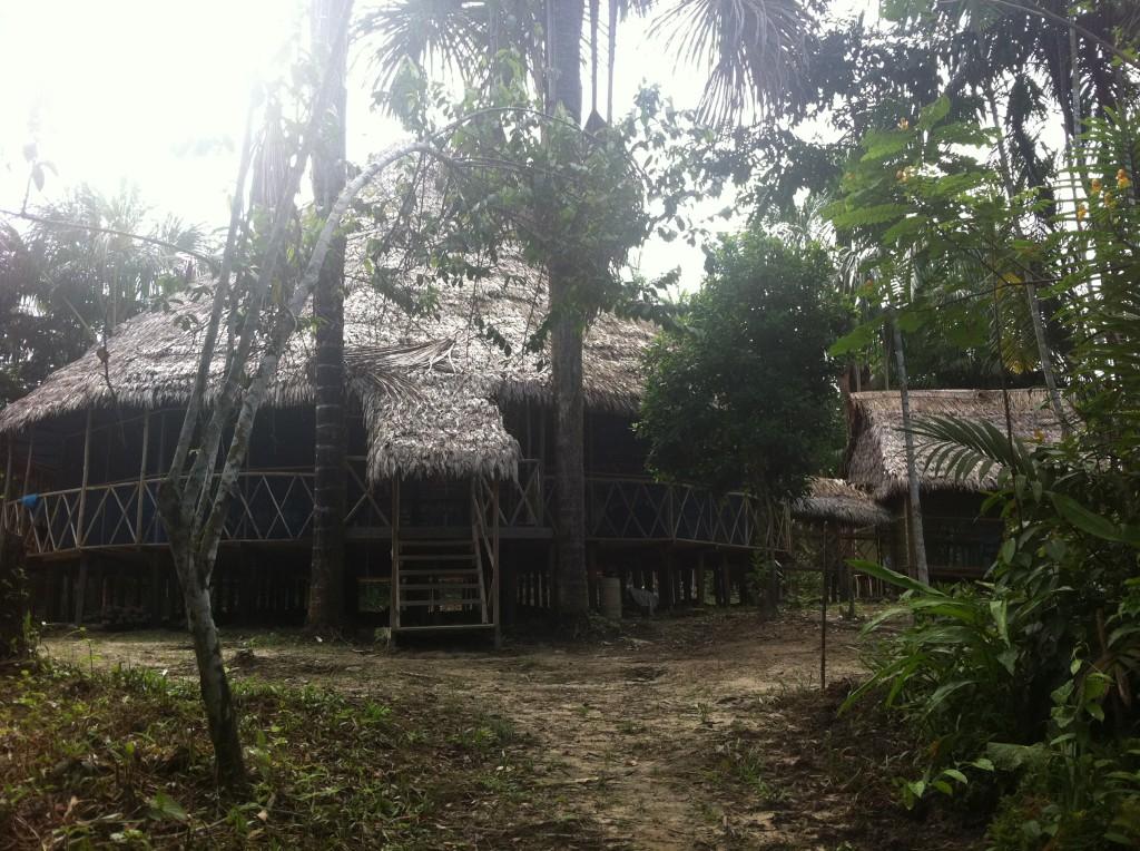 Jungle home, The Amazon, Peru