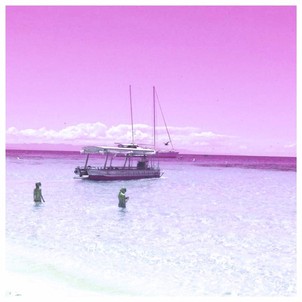 Great Barrier Reef in pink
