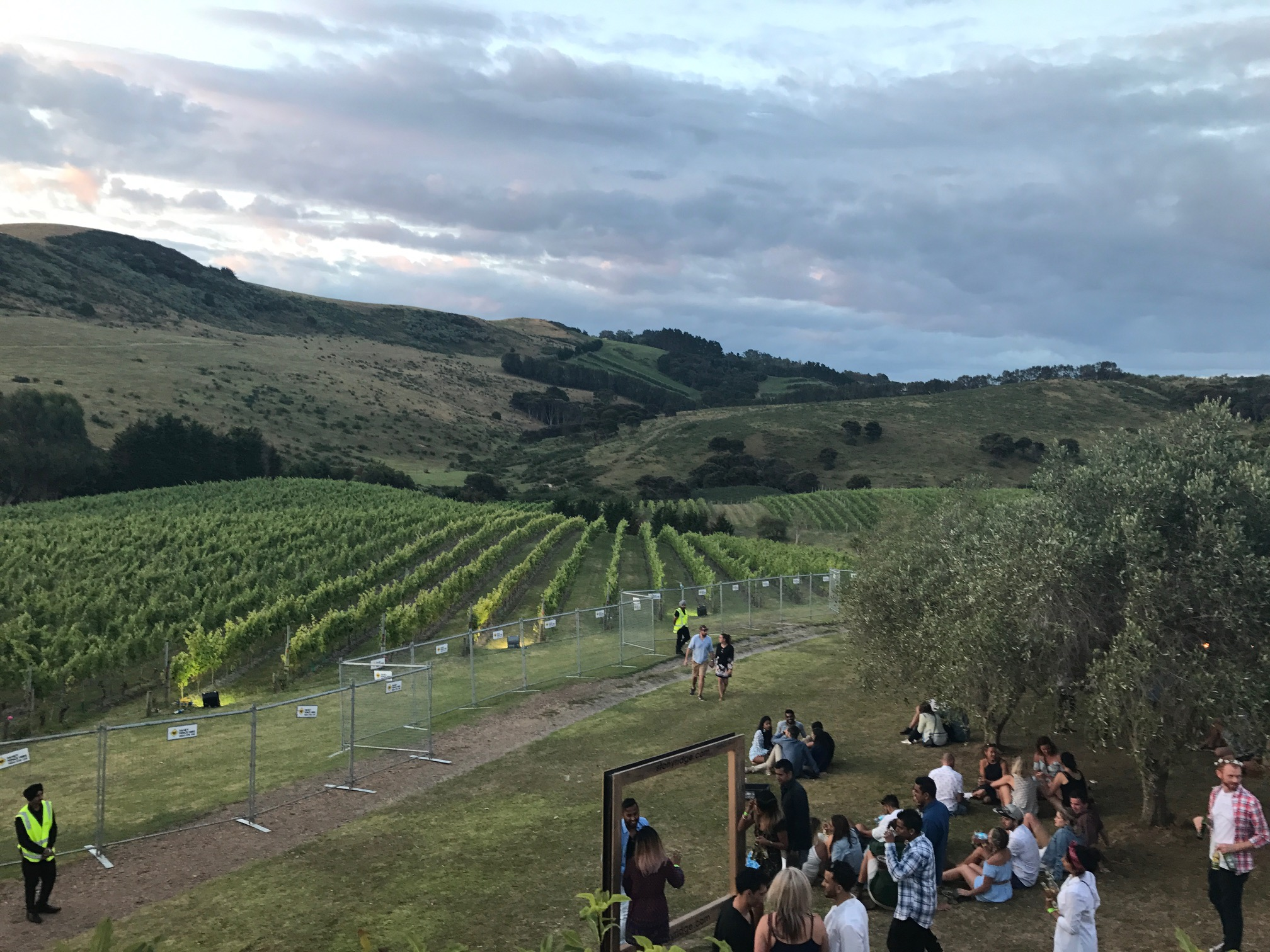 Highlife Festival on Stonyridge Vineyard on Waiheke Island